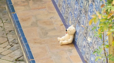 A lost companion in the Real Alcazar, Seville, Spain