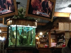TV screens with cooking specials and a massive fish tank.
