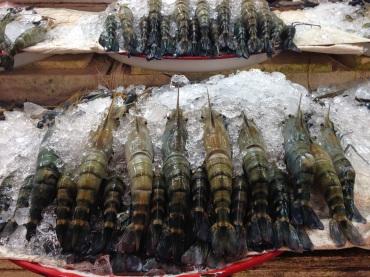 Massive prawns on display at the Or Tor Kor Market.