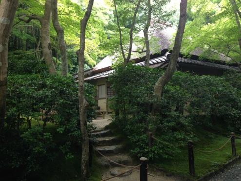 The beautiful Gio-ji Temple.