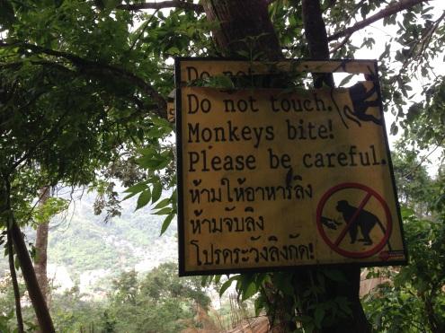 Beware of monkeys at Big Buddha.