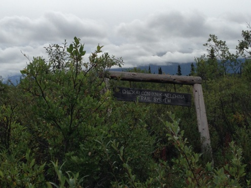 The Chickaloon Knik-Nelchina Trail System off Highway 1.